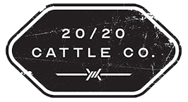 20/20 Cattle Co logo